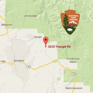 Yosemite Black Oak Location